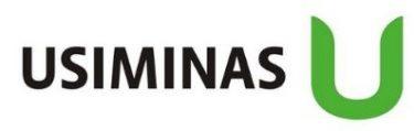 Usiminas S.A. - USIM3, USIM5, USIM6